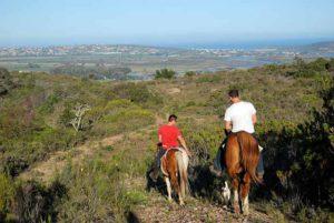 Horse Riding Hartenbos