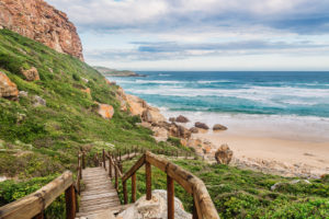 Things To Do In Plettenberg Bay