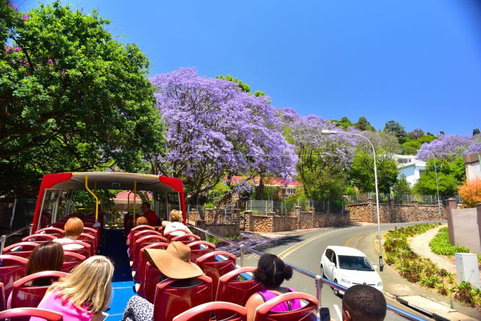 Johannesburg City Pass