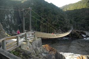 Dolphine Trail Tsitsikamma