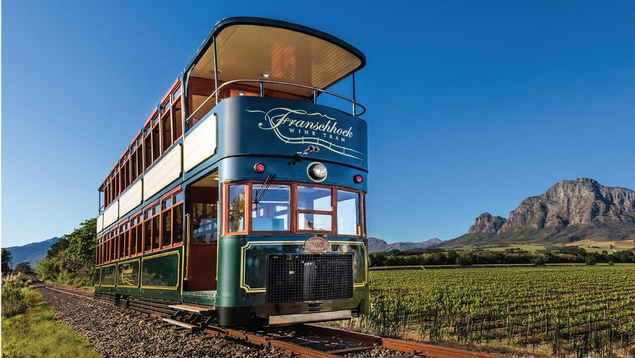 Wine Tasting Tours in Franschhoek